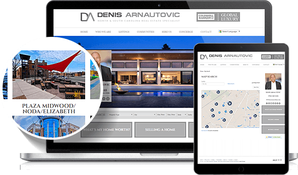 Denis Arnautovic IDX Website Design