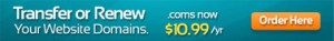 Transfer or Renew Your Website Domains | .coms now $10.99/yr | Order here http://agentimagedomains.com/
