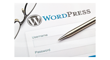 Hosted Wordpress Website - Agent Image